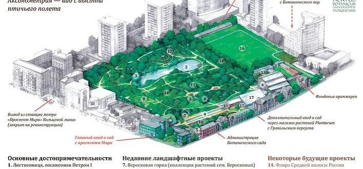 Карта Ботанического сада МГУ Аптекарский огород