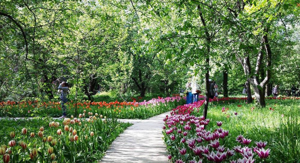 Аптекарский огород - Ботанический сад Московского государственного университета